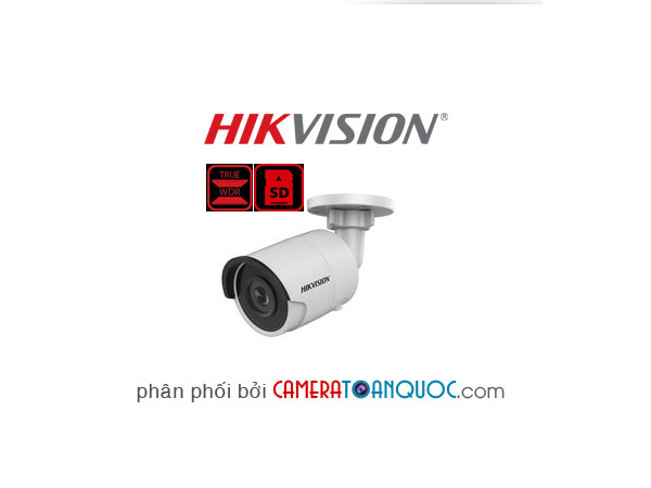 Camera Hikvision DS-2CD2055FWD-I